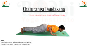 how to do padahastasana  bodhi yoga training academy