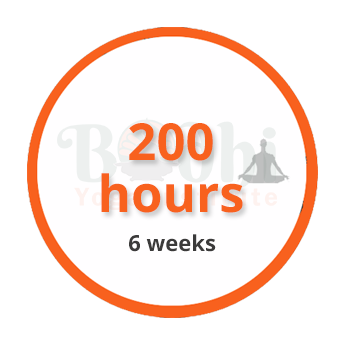 200-hours-6-weeks
