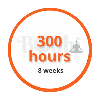 300-hours-8-weeks